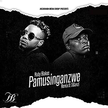 Pamusinganzwe (Remix)