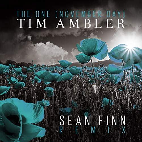 Tim Ambler
