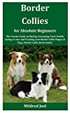 Border Collies for Absolute Beginners: The Concise Guide on Buying,...