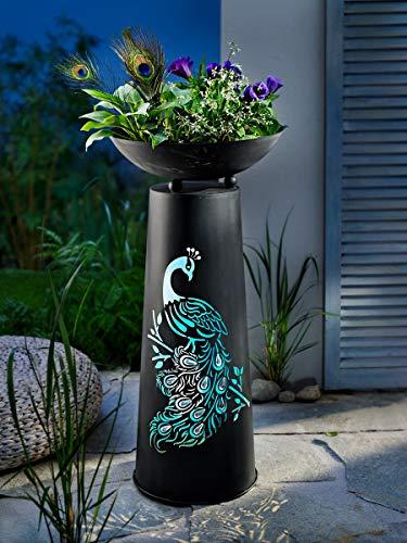 Pflanzsäule Pfau mit stimmungsvoller LED-Beleuchtung   Höhe 71 cm   für innen und außen   6-Stunden-Timer