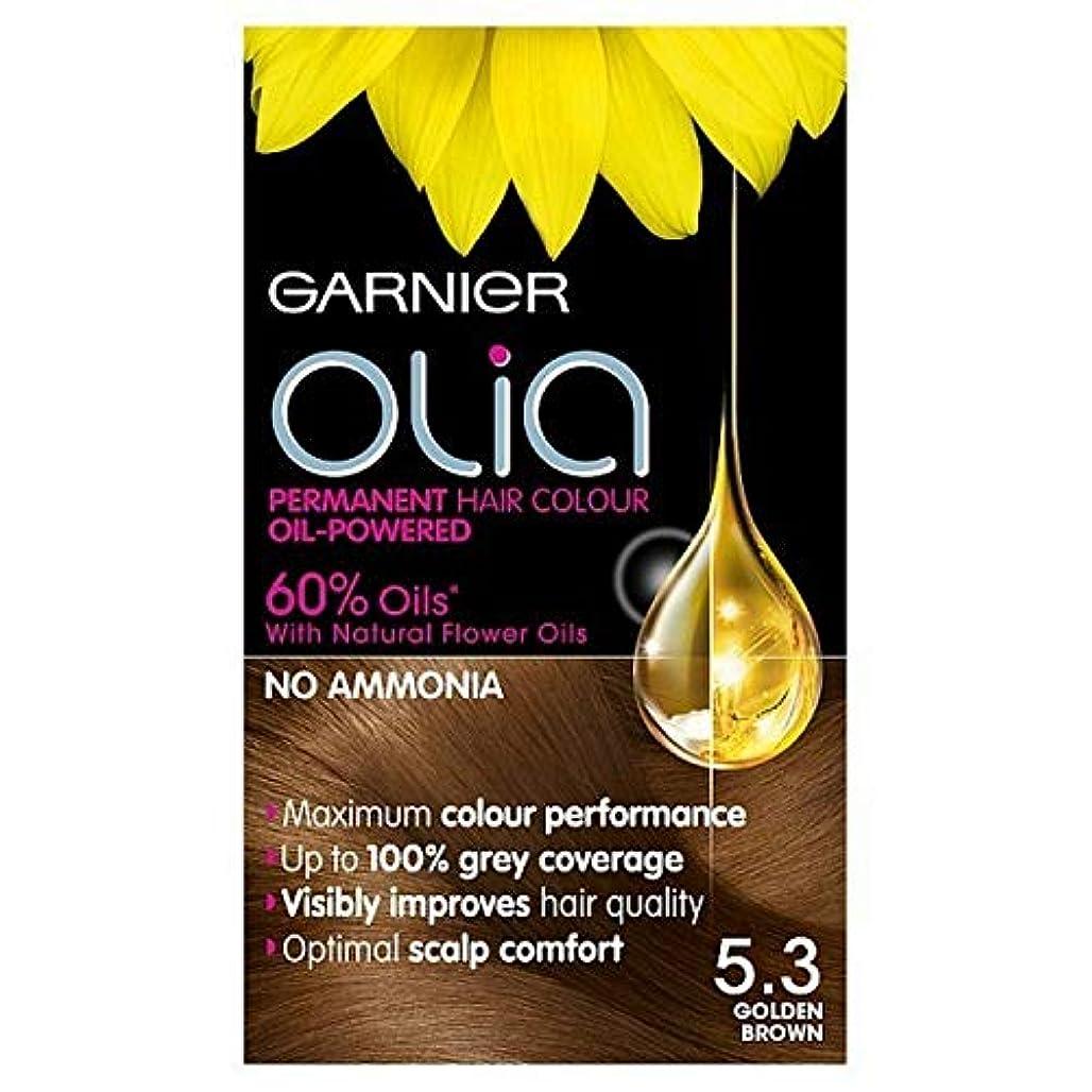 閲覧するとティーム比べる[Garnier ] 5.3キツネ色ガルニエOliaパーマネントヘアダイ - Garnier Olia Permanent Hair Dye Golden Brown 5.3 [並行輸入品]
