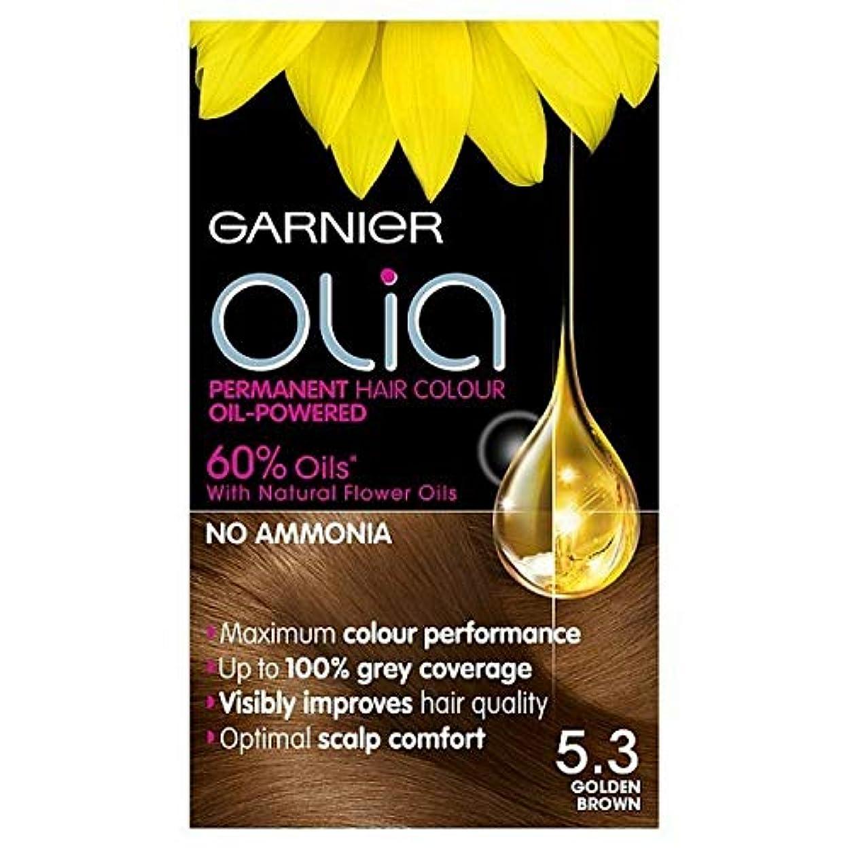 チューインガム密度広く[Garnier ] 5.3キツネ色ガルニエOliaパーマネントヘアダイ - Garnier Olia Permanent Hair Dye Golden Brown 5.3 [並行輸入品]