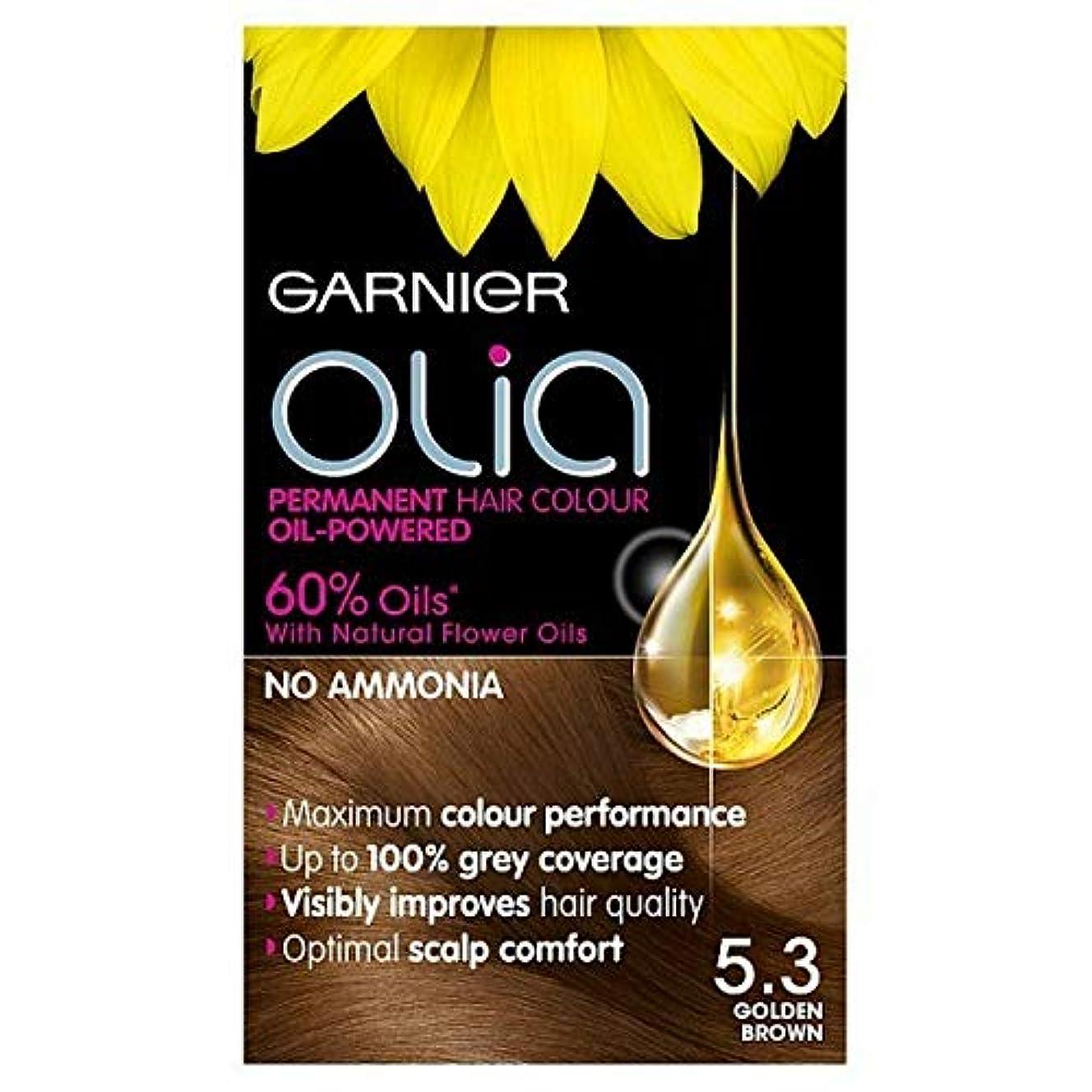 スチュワード負荷類人猿[Garnier ] 5.3キツネ色ガルニエOliaパーマネントヘアダイ - Garnier Olia Permanent Hair Dye Golden Brown 5.3 [並行輸入品]