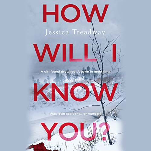 How Will I Know You? audiobook cover art