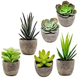 Supla 6 Pcs Assorted Potted Succulents Plants Decorative Artificial Succulent Plants Potted Faux Cactus Aloe with Gray Pots Artificial Topiary Plant Potted