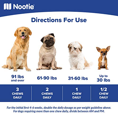 ❶ Glucosamine Chondroitin for Dogs - 250 Training Size Dog Treats - Daily Chewable Dog Glucosamine with Tumeric - MSM - Hip and Joint Soft Chews 250 ct -2 Month Supply - All Breeds and Sizes USA