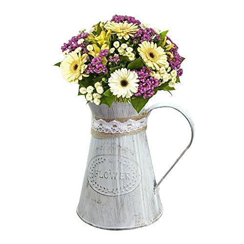 Seau de fleur en fer Rétro Old-Fashioned Metal Seaux à fleurs Flower Shop Ornement Corde en chanvre fait à la main Pot de fleurs Accessoires de photographie innovants Petit récipient Vase