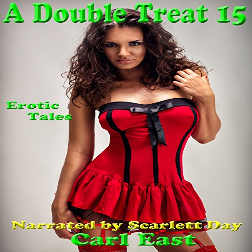 A Double Treat 15 audiobook cover art