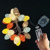 WesGen 20 Easter Egg LED String Lights