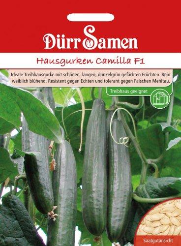Dürr Samen 1112 Hausgurke Camilla F1 (Hausgurkensamen)
