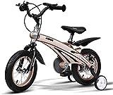 Triciclo Bebé Trolley Trike Bicicleta for niños convenientes, 3 años de hombres y mujeres bebé bebé carruaje 12/14/16 pulgadas bicicleta bicicleta de montaña niño cómodo (color: oro, tamaño: 16 pulgad