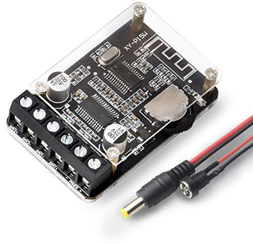 OWAYKEY Audio Bluetooth Amplificatore Board 10 W 15 20 2.0 Canali Stereo Wireless Mini Amp Modulo con Guscio Protettivo