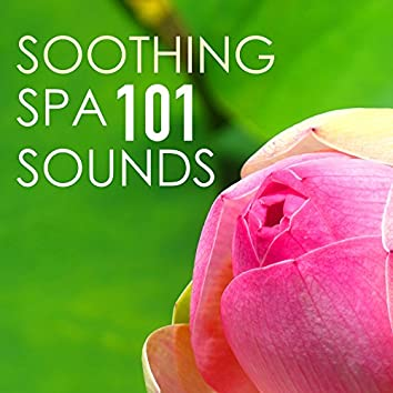 Soothing Spa Sounds 101 - Serenity Massage Background Music for Healing Moments, Tribe Songs