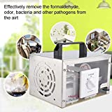 LBWNB 35G/H Generador De Ozono Comercial Ozonizador Máquina De Desinfección De Limpieza para Automóviles, Hogar, Oficina, Baño, Alimentos, Mascotas