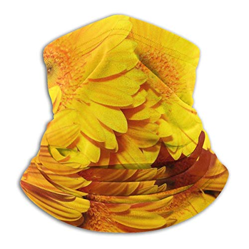 Ewtretr Beauty Sunflower Winter Fleece Hals Gamasche Halswärmer Gesichtsmaske Outdoor