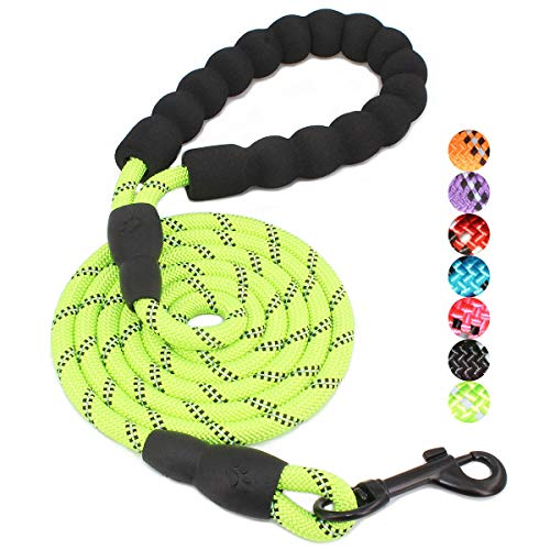 BAAPET 4/5/6 FT Strong Dog Leash with Comfortable Padded Handle and Highly Reflective Threads for Small Medium and Large Dogs (5FT-1/3'', Green)