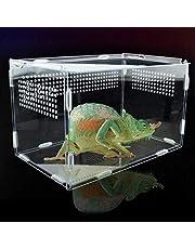 Hábitat de terrario transparente para reptiles, caja de alimentación acrílica de vista completa, caja de cría de reptiles con orificios de aire, para insectos araña, lagarto, rana, cricket, tortuga