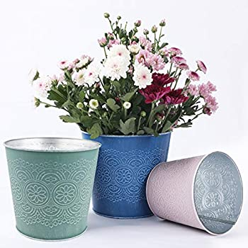 6 Pack Flower Plant Pots Set Plant Basket Indoor Outdoor Planters Metal Containers of 3 Sizes and Colors with Retro Floral Pattern for Succulent and Different Size Plants  Blue Pink Green