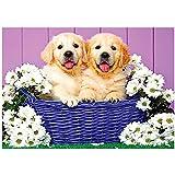 Kit de pintura de diamantes 5D por número para perro en cesta de flores de punto de cruz con diamantes bordados, mosaico, imágenes de pared, regalo para decoración del hogar