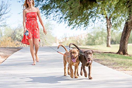 WIGZI Two Dog Reflective Retractable Pet Leash