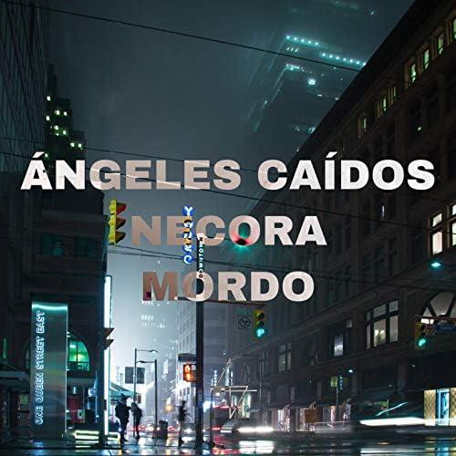 Necora & Mordo