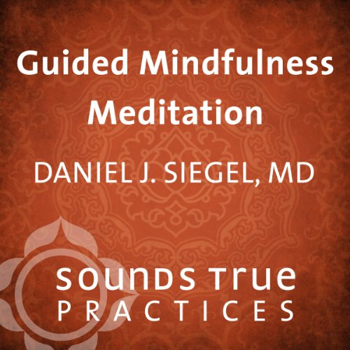 Guided Mindfulness Meditation cover art