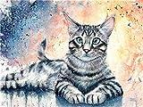 Pintura por números gato rayado DIY para adultos lienzo pintura al óleo Set principiantes pintura con pinceles y pinturas acrílicas 40x50cm