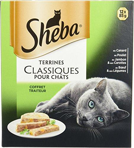 Sheba Terrines Classiques pour chat adulte – Nourriture humide pour chats - coffret traiteur avec 4 variétés délicieuses en barquette – 72 x 85g