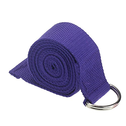VijTIAN - Correa elástica para yoga con anilla en D, más duradera y firme, cintura de 180 cm, ajustable, ideal para ejercicios de yoga y pilates, puede ejercitar tu cintura, brazos, piernas y espalda, Púrpura oscuro