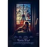 Liuqidong Vlies Leinwandbild Wonder Wheel Kate Winslet