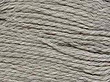 Cascade Yarns Eco Wool, 8018 - Silver