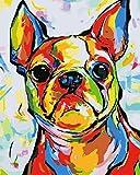 YUHHGFK DIY Pintura por Números Perro Animal de Color Pint por Número de Kits con Pinceles y Pinturas para Adultos, niños y Principiantes Decoraciones Hogar - 40 X 50 cm (con Marco de Madera)