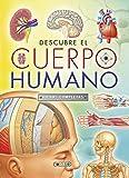 Descubre El Cuerpo humano. Fichas Completas