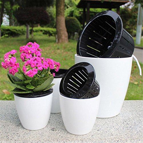 ECYC® Creative Automatique Arrosage suspendu Pot de fleurs, Plantes Pots Intérieur Mur Hang Flowerpot, M