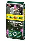 Floragard Kakteenerde 5 L • für alle Kakteen und...
