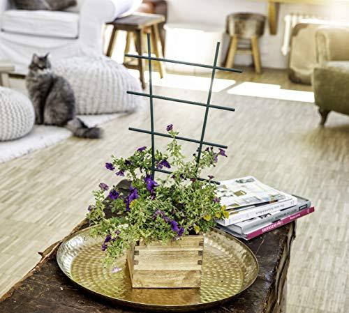 Windhager Blumenstütze Rankhilfe Gitterspalier Rankgitter, Kunststoff, gerade, Grün, 43 x 23 cm - 2
