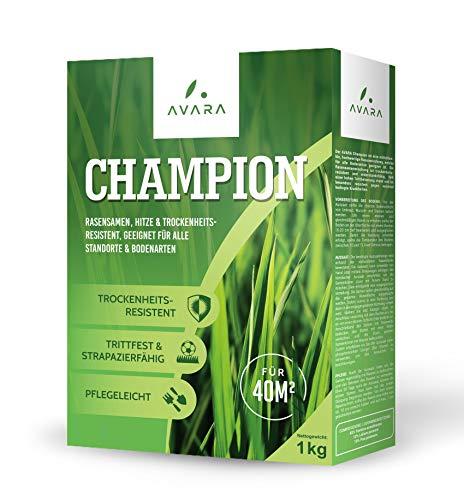 AVARA Champion - Rasensamen - dürreresistent - geeignet für alle Standorte & Bodenarten - 1kg