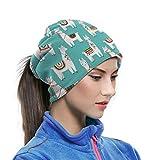 Peruvian Llama Mexican Alpaca Ethnic Blanket Unisex Neck Warmer Gaiter Balaclava Ski Mask Cold Weather Face Mask Winter Hats Headwear For Men Women