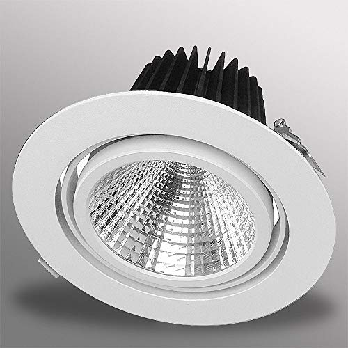 Mextronic Einbaustrahler 30W LED Einbaustrahler EXLITE-R 5000K Weiß schwenkbar Ø 175mm