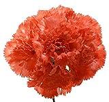 Ramillete de flamenca de claveles coral