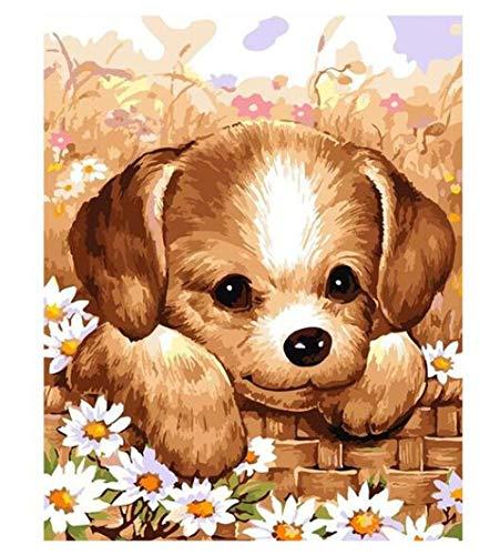 BVFDBGR Pintar por Números Adultos,Lindo Cachorro 40×50 Cm DIY Lienzo Pintura al Óleo Kit para Principiantes Niños con Pinceles y Pinturas Dibujos por Numeros,para Decoración del Hogar,