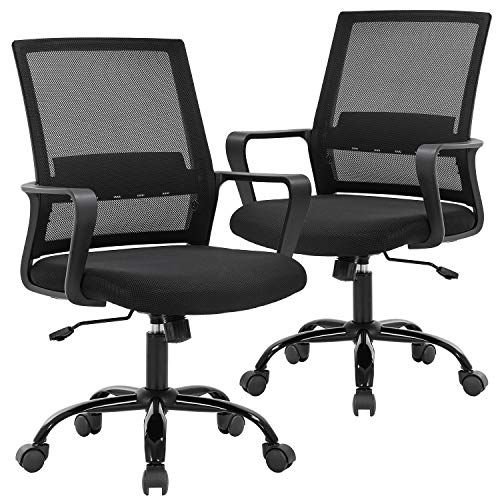 Office Chair Desk Chair Computer Chair Swivel Rolling Executive Lumbar Support Task Mesh Chair Metal Base for Women&Men 2 Pack
