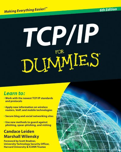 Leiden, C: TCP / IP For Dummies