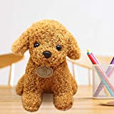 mzDkc0d Babyspielzeug Geschenk Realistischer Teddy Hund Glückliches, handgemachtes realistisches Figurenspielzeug Hund Plüschtier Kinder and Pets