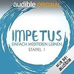 Flg. 1.1 - Was ist Impetus?