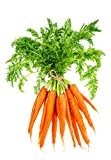 Carrot Seeds for...image