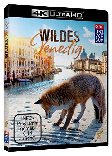 Wildes Venedig (4K Ultra HD) [Blu-ray]