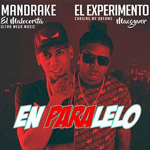 El Experimento Macgyver & Mandrake El Malocorita