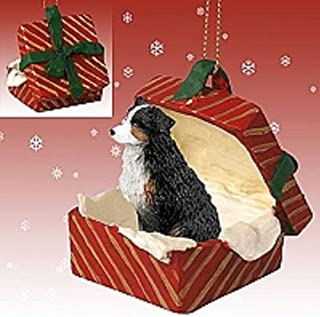 Conversation Concepts Australian Shepherd Tricolor w/Docked Tail Gift Box Red Ornament