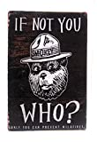 Smokey The Bear. If Not You Who? Only You Can...